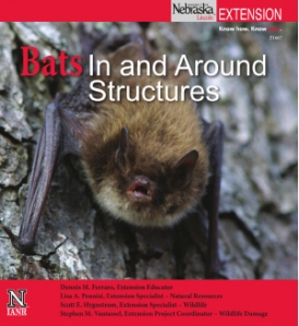 New UNL Extension Publication about bats