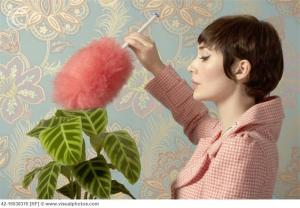 Woman_Dusting_Houseplant_42-16538370